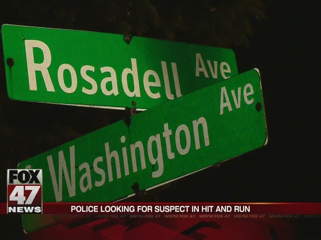 Police looking for suspect in hit and run