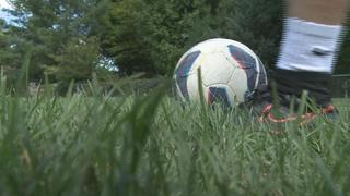 MSU soccer completes undefeated home season