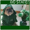 Yes! Pics: GO GREEN