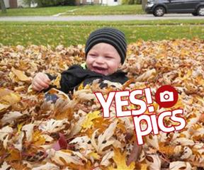 PHOTOS: 'Tis the season for fall foliage