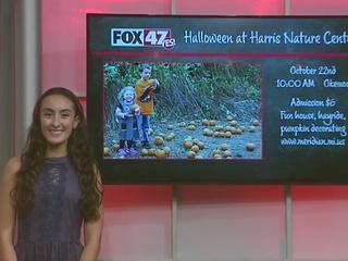 Around Town Kids: Harris Nature Center Halloween