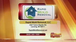 Rapid Mold Removal - 11/30/16