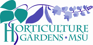 MSU Horticulture Gardens hosts holiday open...