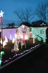 Yes! Pics: Holiday Lights