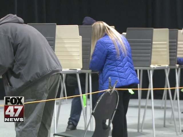 MI elections chief testifies on recount