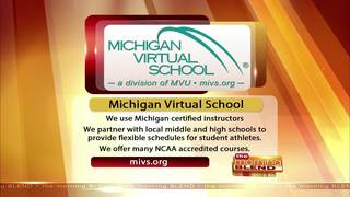 Michigan Virtual School - 1/20/17