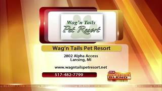 Wag'n Tails Pet Resort - 1/24/17