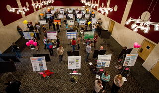 Undergraduate research ranging from science...