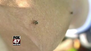 Mosquito concerns growing with the season change