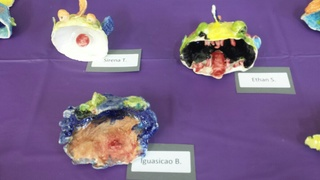 Cole Academy celebrates art program with fair