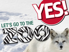 Let's Go To The Zoo: News, events, and more!