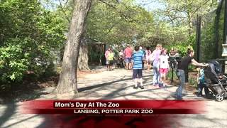 Moms spend Mother's Day at Potter Park Zoo