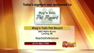 Wag N Tails- 9/18/17