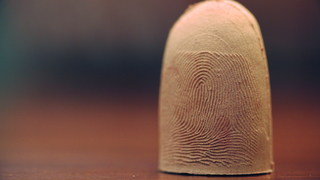 Creating fingers to protect identities