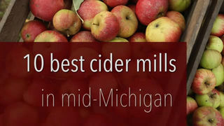 10 of the best cider mills in Michigan