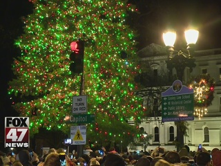 61-foot spruce chosen as state Christmas tree