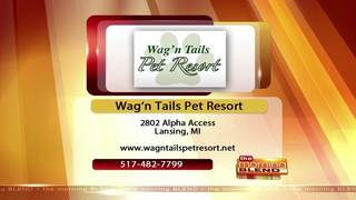 Wag'n Tails - 5/17/17