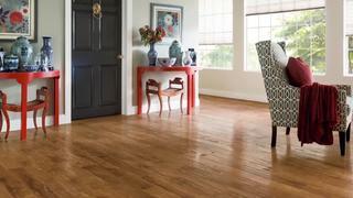 Revolutionary, waterproof & pet proof floor