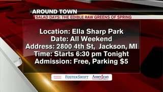 Around Town 7/20/18: Jackson Hot Air Jubilee